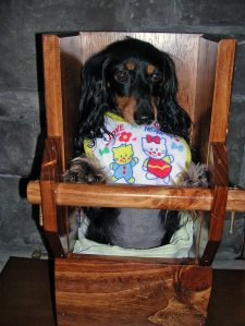 """Bella, in her """"Bailey Chair"""""""